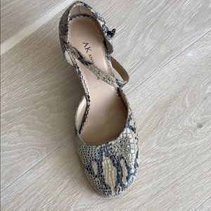 Anne Klein shoes worn once